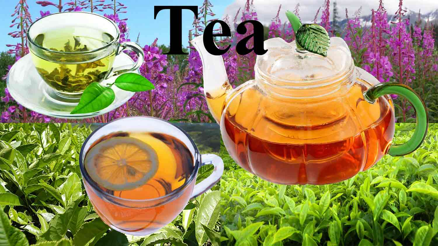 Tea_is_different